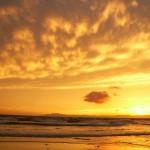 GO NAMINORI  自然への感謝