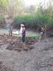 タイ パイのタコメパイファームでの授業で畑をつくる