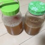 しゅわさかさん 天然の乳酸菌発酵健康飲料で腸を整える