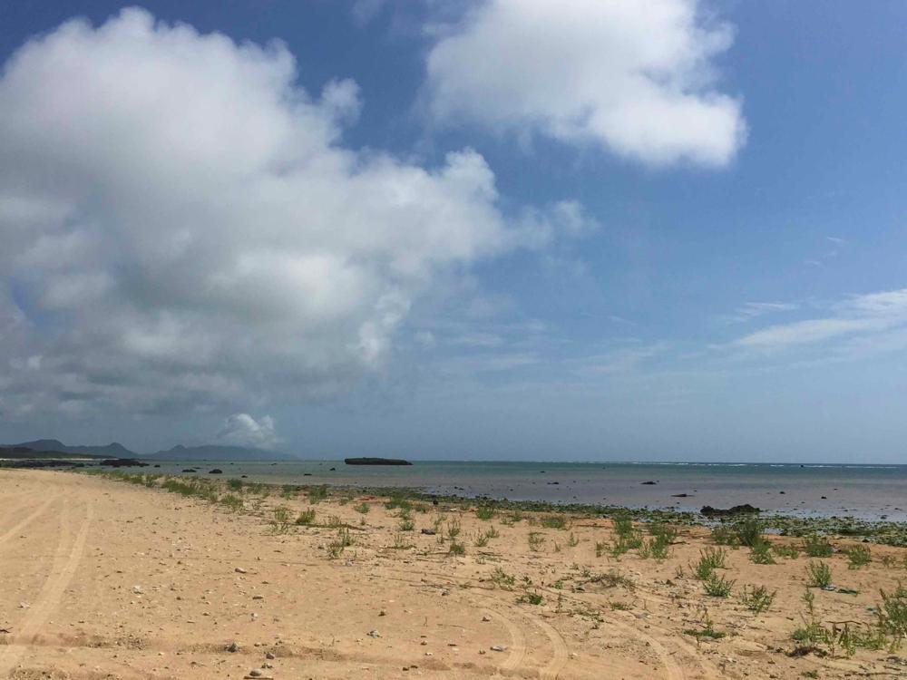 南の島暮らし2年たった! 鎌倉から石垣移住3年目!