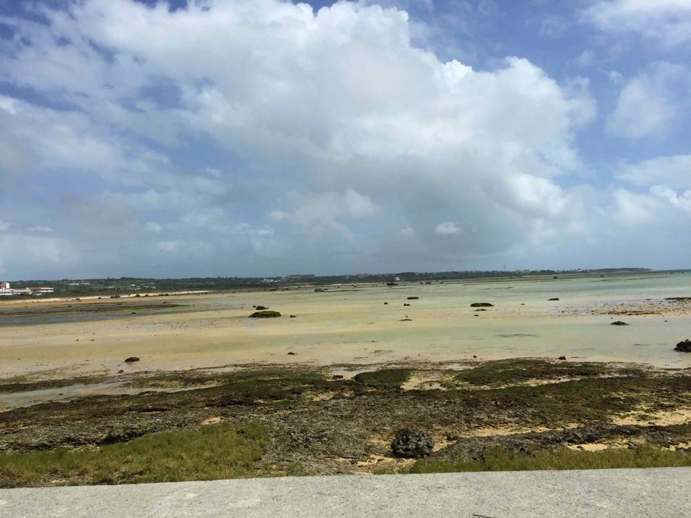 海は昨日も今日も明日も綺麗だ。国はストロンチウム90の測定をしろって改めて思った。