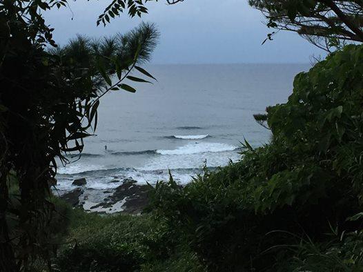 ワンハンドビーチクリーンとサーフィン行くときはプラグを抜こう。