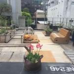 毎日が アースデイ Earth Day 2017アースデイ永田町、アースデイ東京に参加