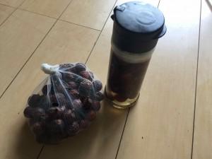 木の実の石けん ソープナッツ ムクロジ