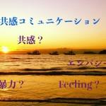 共感道場@石垣島 共感/非暴力コミュニケーション)学習会 「心の声を聴く」