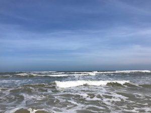 サーフィン保険  事故やトラブル防止して安心して海を楽しもう